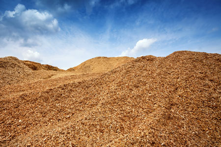 Biomass integrated services